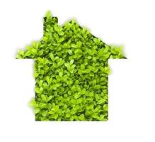 Construire et rénover sa maison écologique